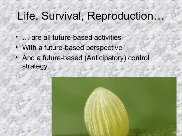 Life, Survival, Reproduction… • … are all future-based activities • With a future-based perspective • And a future-based (...